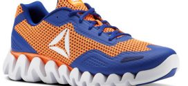 Reebok – Zig Pulse – SE (Mens shoe)